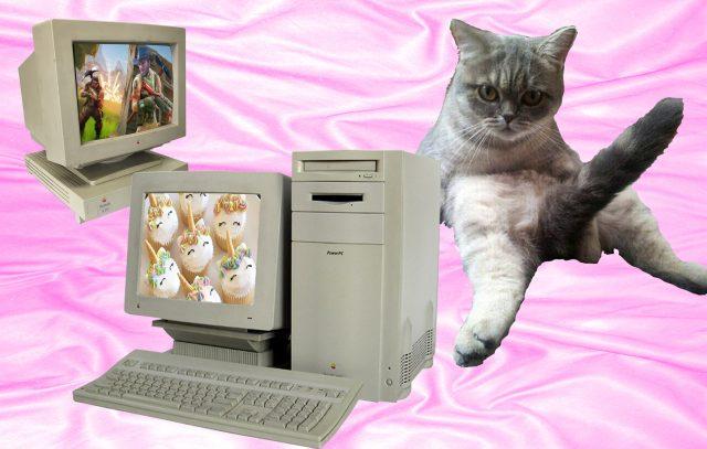 Illustratie met oude desktopcomputers en een kat